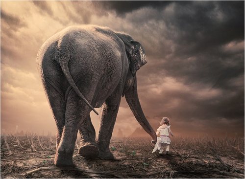 elephant and girl
