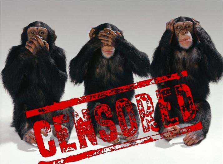 Monyet Disensor