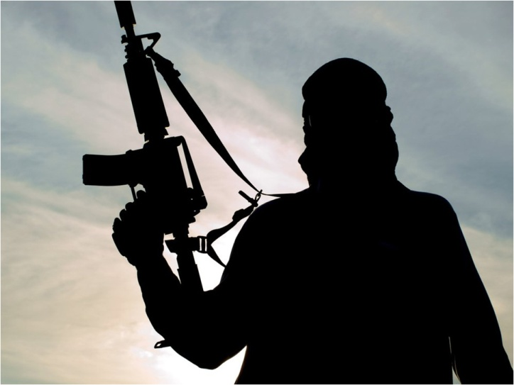 digital Terrorisme